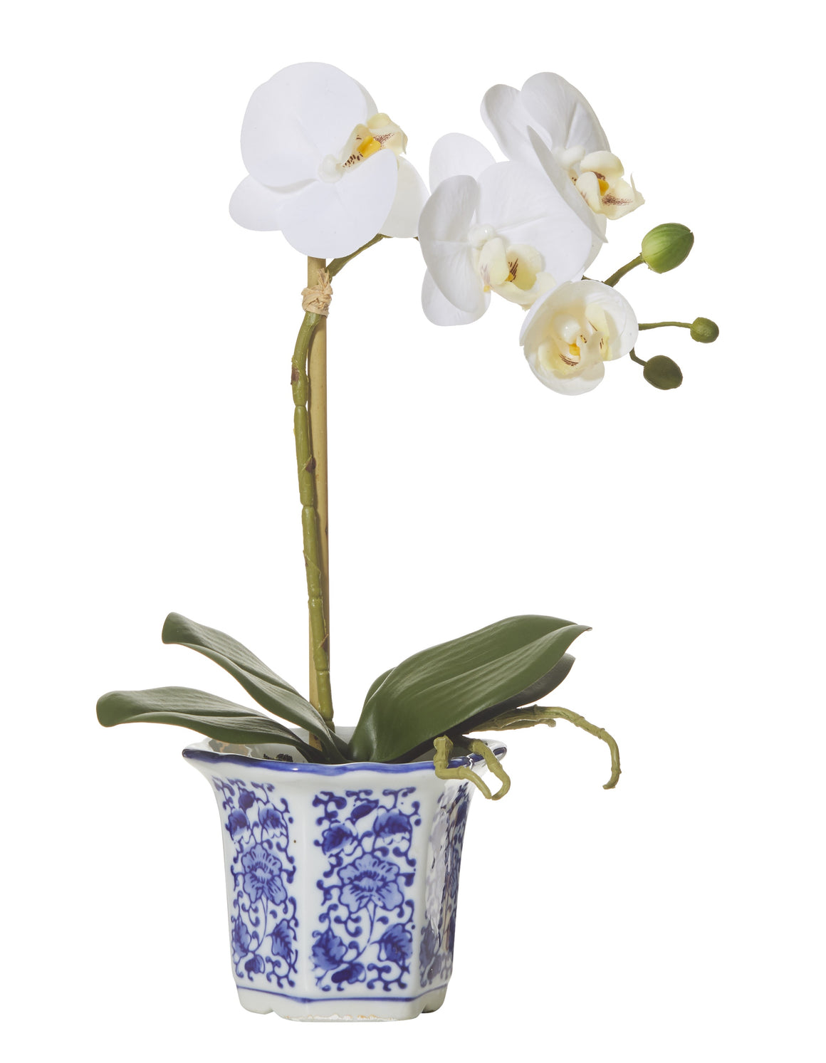 Butterfly Orchid Chinoiserie Pot 38cm
