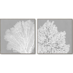 Coral Canvas Grey Print Set of 2