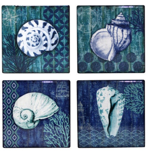 Sea Shell Coasters Set of 4