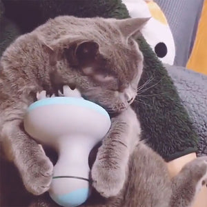Pet Intelligent Cats Automatic Rotate Waterproof Electric Dragon Claw Han Charging Cat Massager 3D Head Massager Omnidirectional