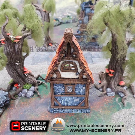 Ruined Small Cottage Cottage en ruine Humains humain magie scenery décor decor print 3D impression 3D imprimé en 3D jeu figurine wagame terrain
