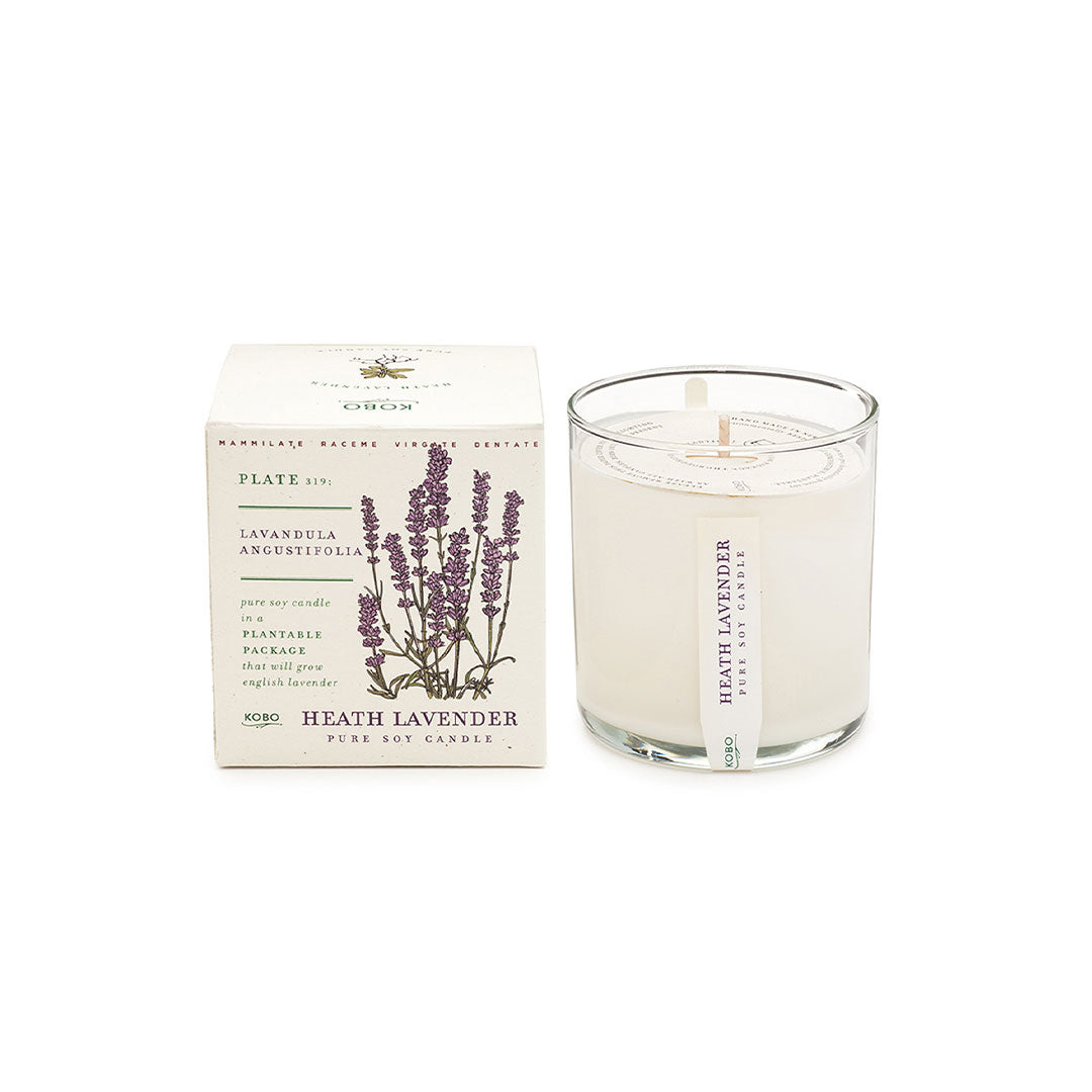 Plant the box Heath Lavender candle - ekuBOX