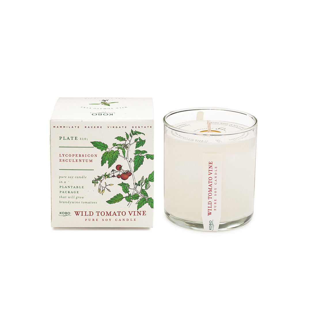 Plant the Box Wild Tomato Vine candle - ekuBOX