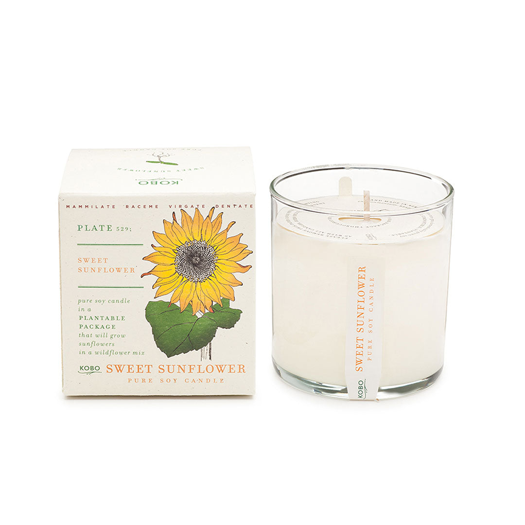 Plant the box Sweet Sunflower Candle - ekuBOX