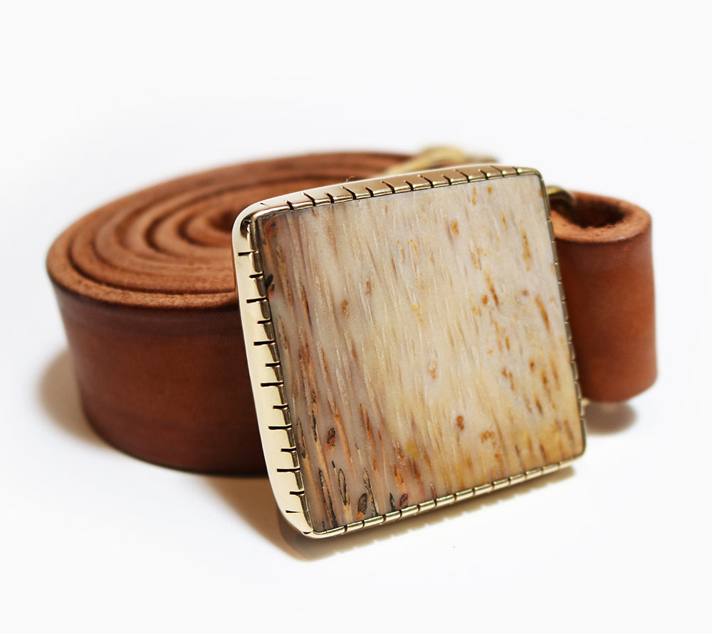 Petrified Palm Wood Belt Buckle