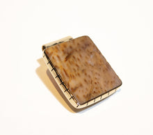 Petrified Palm Wood Money Clip