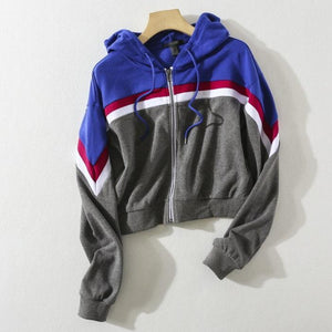 Striped Two Tone Zip-Up Fleeced Hoodie