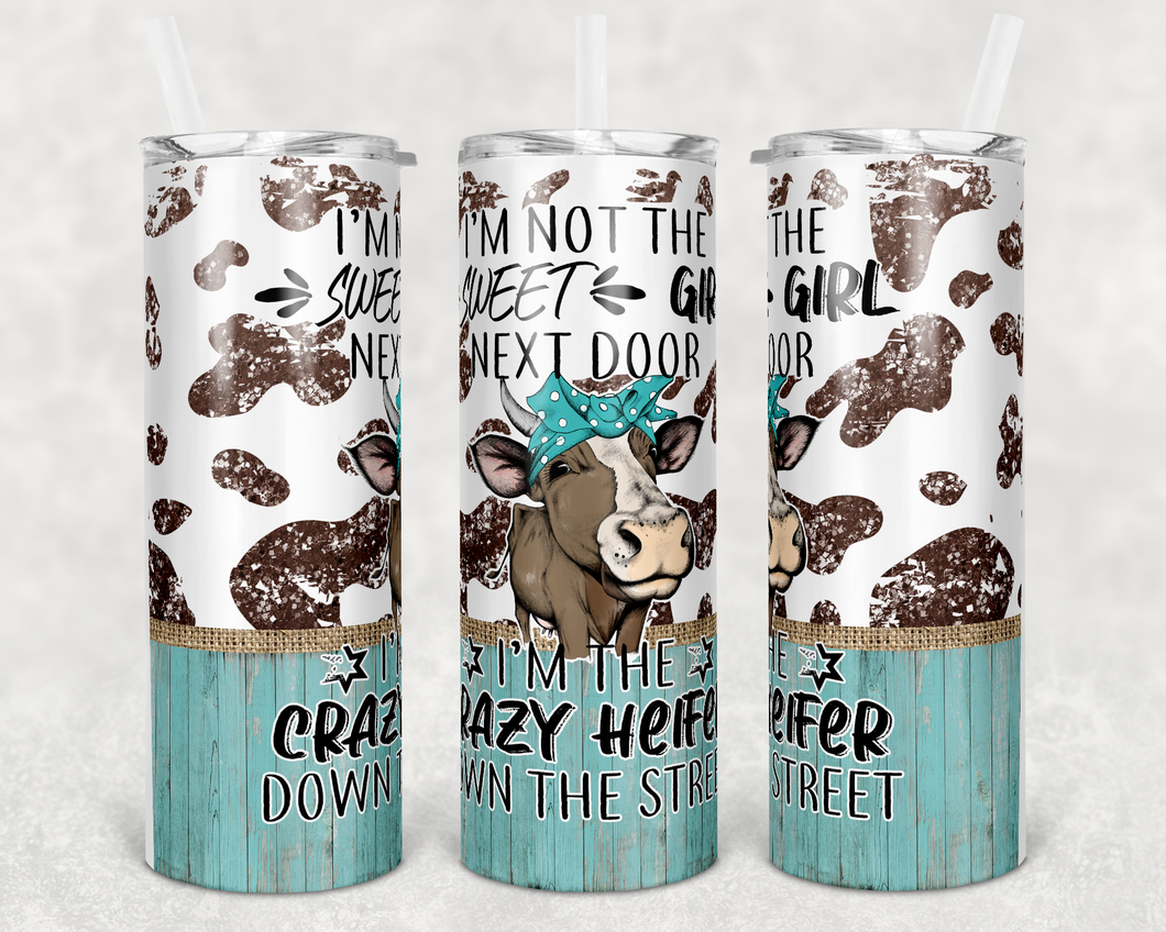 Crazy heifer down the street funny sublimation tumbler