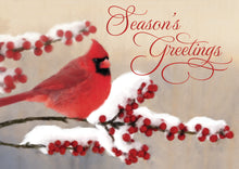 Load image into Gallery viewer, Gift of Hope: Winterberry Cardinal Cards (20/Box)