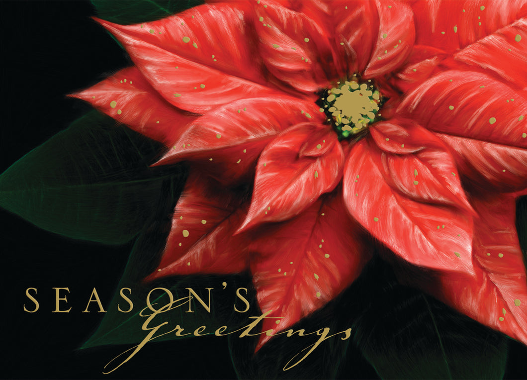 Gift of Hope: Rich Poinsettia Cards (20/Box)