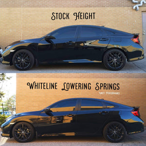 Whiteline Lowering Springs - All Civic