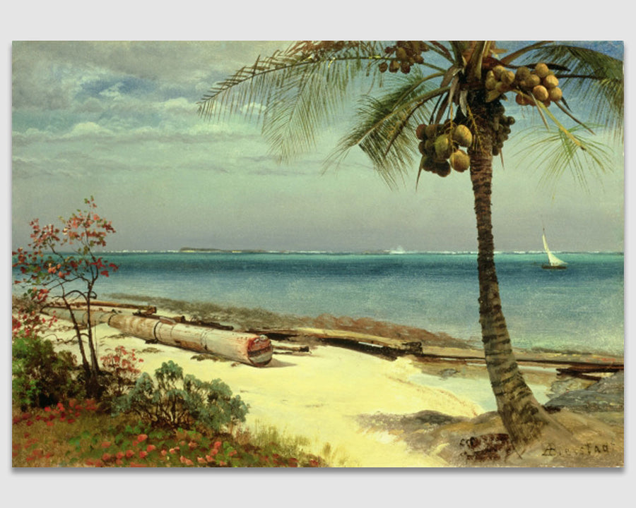 Tropical Coast ---- Albert Bierstat