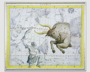 Constellation of Taurus, plate 2 - James Thornhill