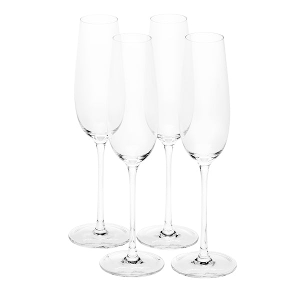 Joshua Steinberg Crystal Sommelier Champagne Flutes, Set of Four