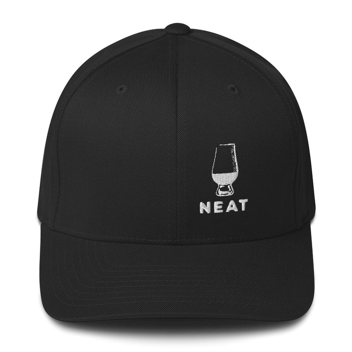 Neat Fitted Hat