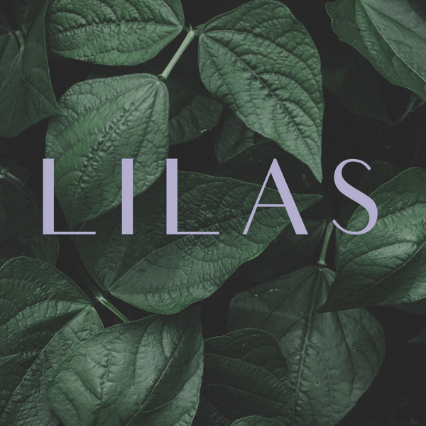 Meet the LILAS Fall 2020 Interns