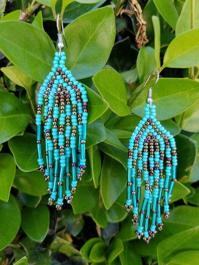 Turquoise & Brown Earrings