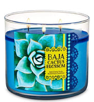 Baja Cactus Fragrance Oil