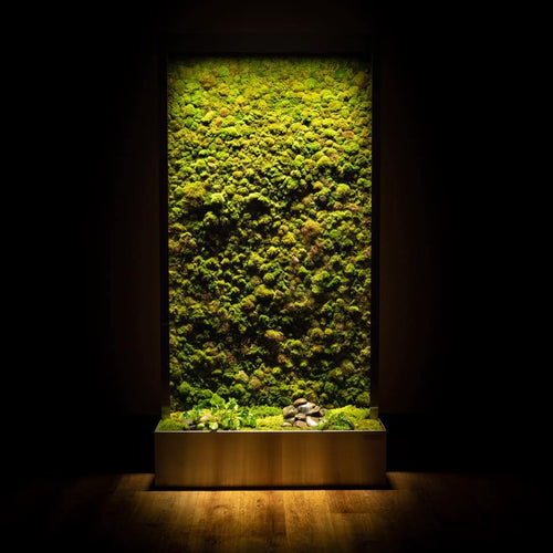 Verdure Wellness Wall 4 x 8 ft Standard Unit