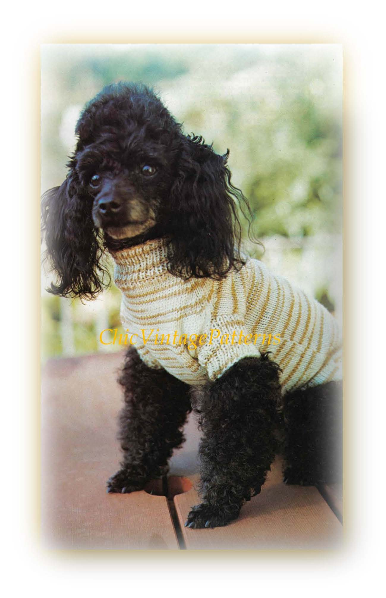 Easy- to-Knit Dog Coat Pattern, Small Dog, Instant Download