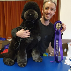 Bone Idol Brighton Award Winning Groomers