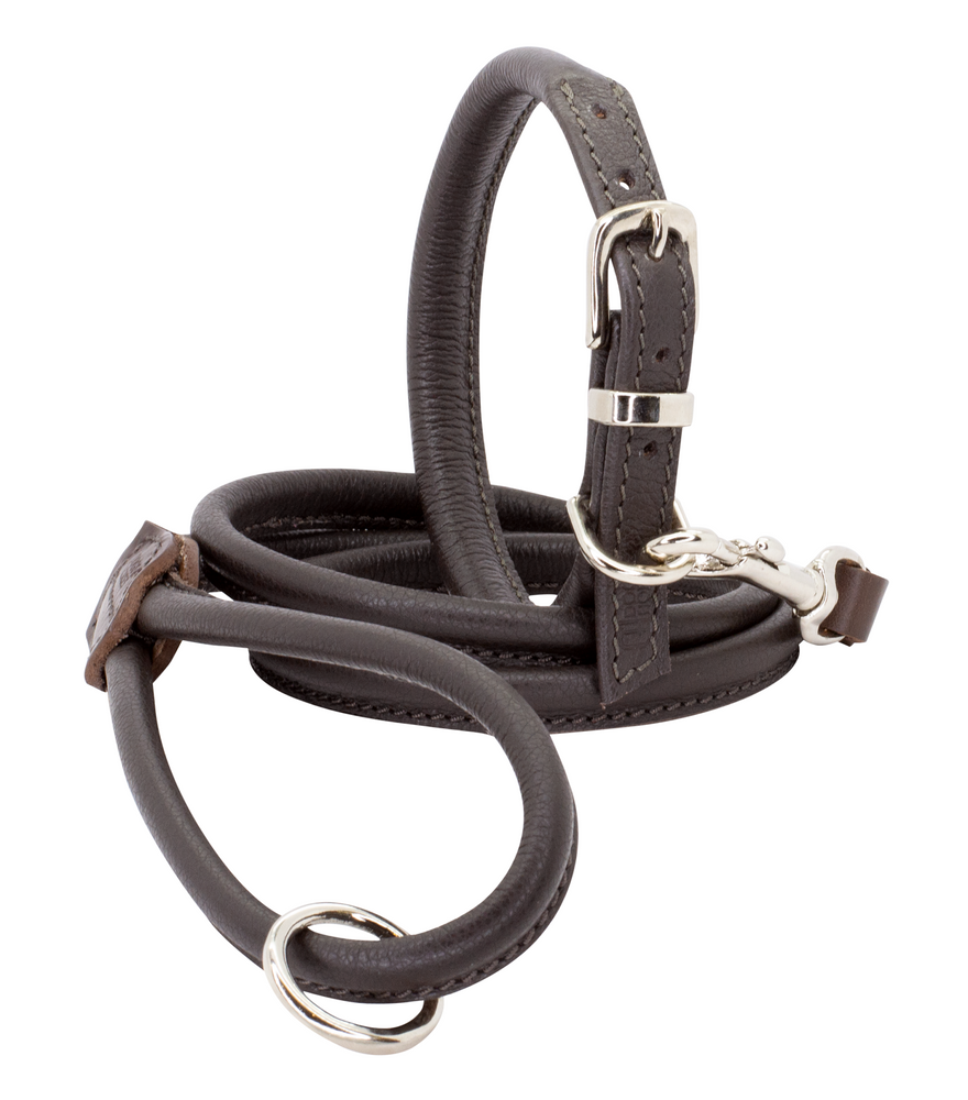 D&H | Rolled Leather Dog Collar & Lead Set