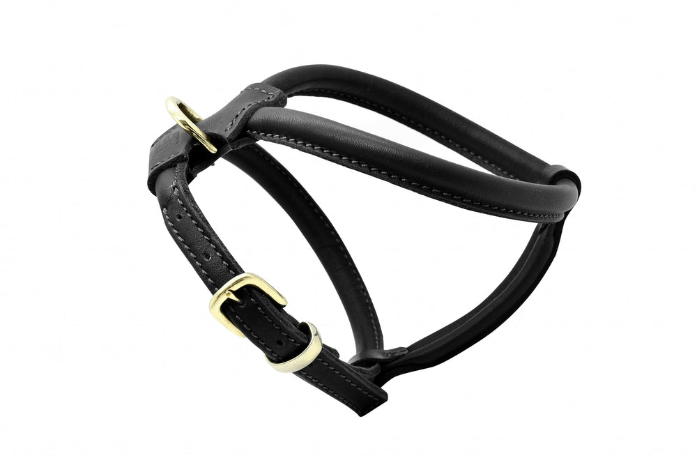 Black & Silver D&H Rolled Leather Dog Harness