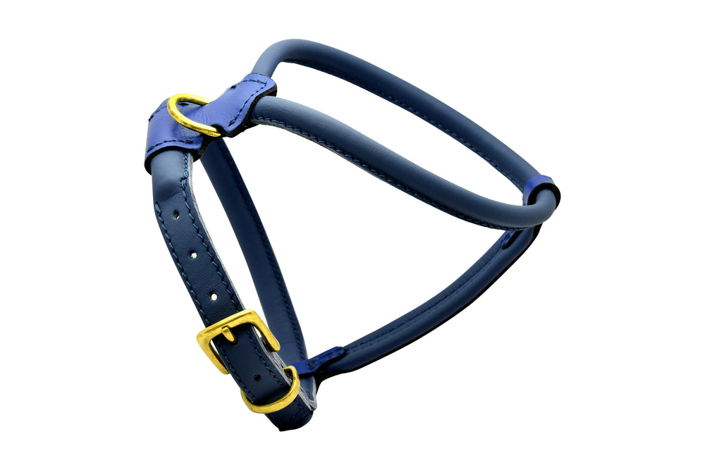 Navy French Bulldog D&H Rolled Leather Dog Harness