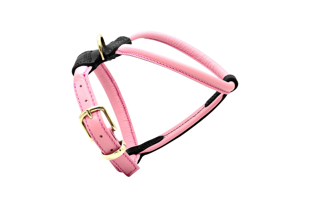 Pink French Bulldog D&H Rolled Leather Dog Harness