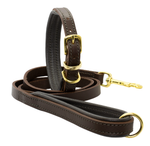 D&H | Padded Leather Dog Collar with Matching Padded Leather Lead