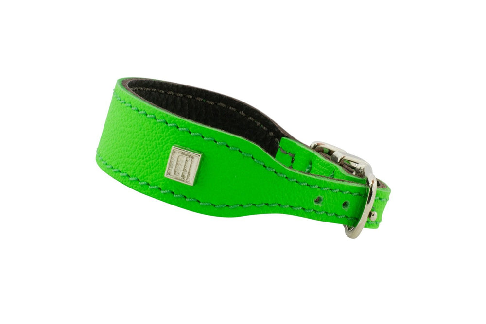 Green D&H Leather Italian Greyhound Collar