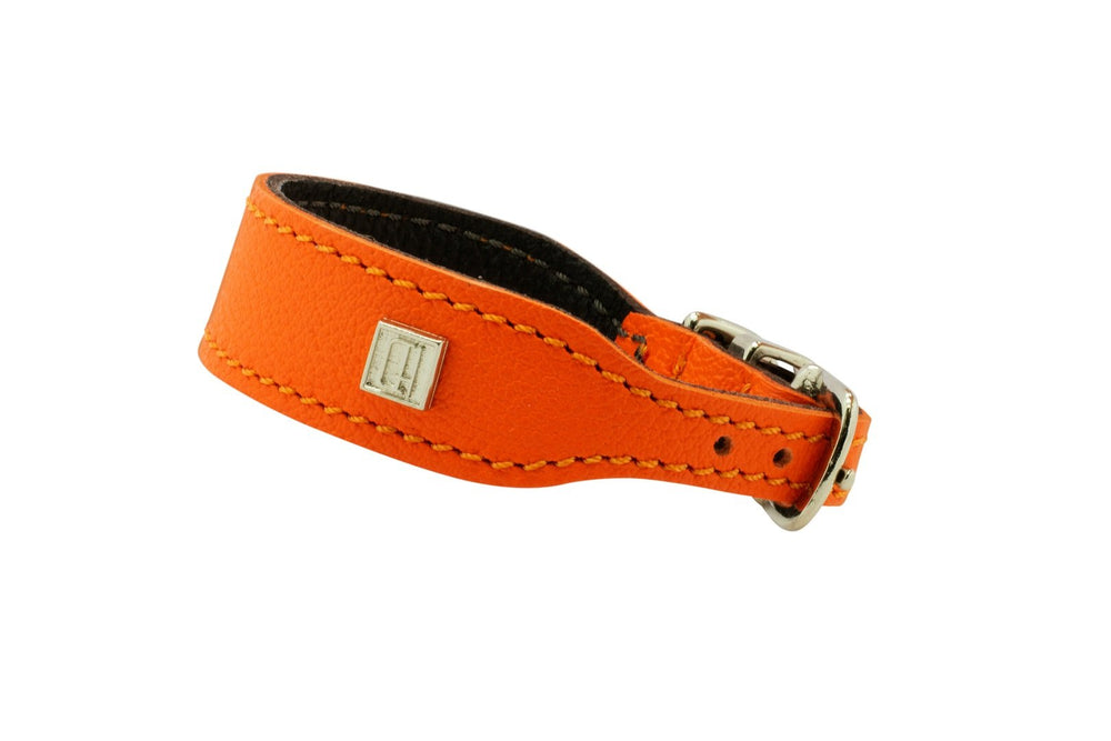 Orange  D&H Leather Italian Greyhound Collar