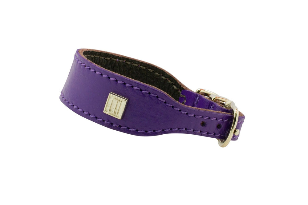 Purple D&H Leather Italian Greyhound Collar