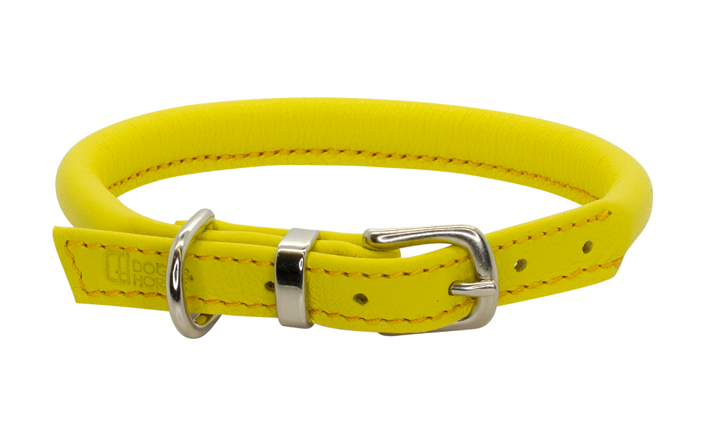 D&H | Rolled Leather Dog Collar