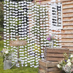 White Floral Back Drop - Rustic Country