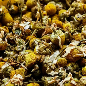 German Camomile Flower CBD Tea