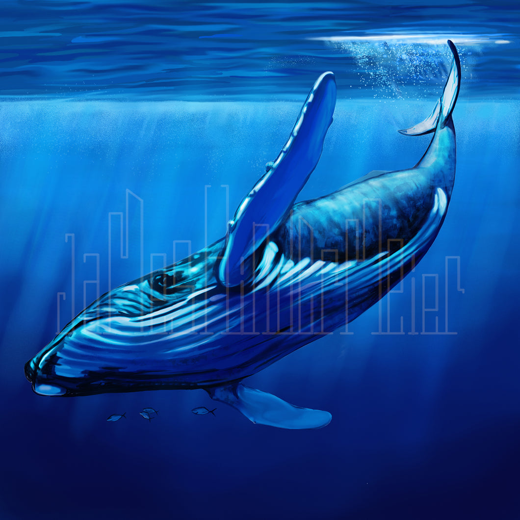 Blue Whale with Fish