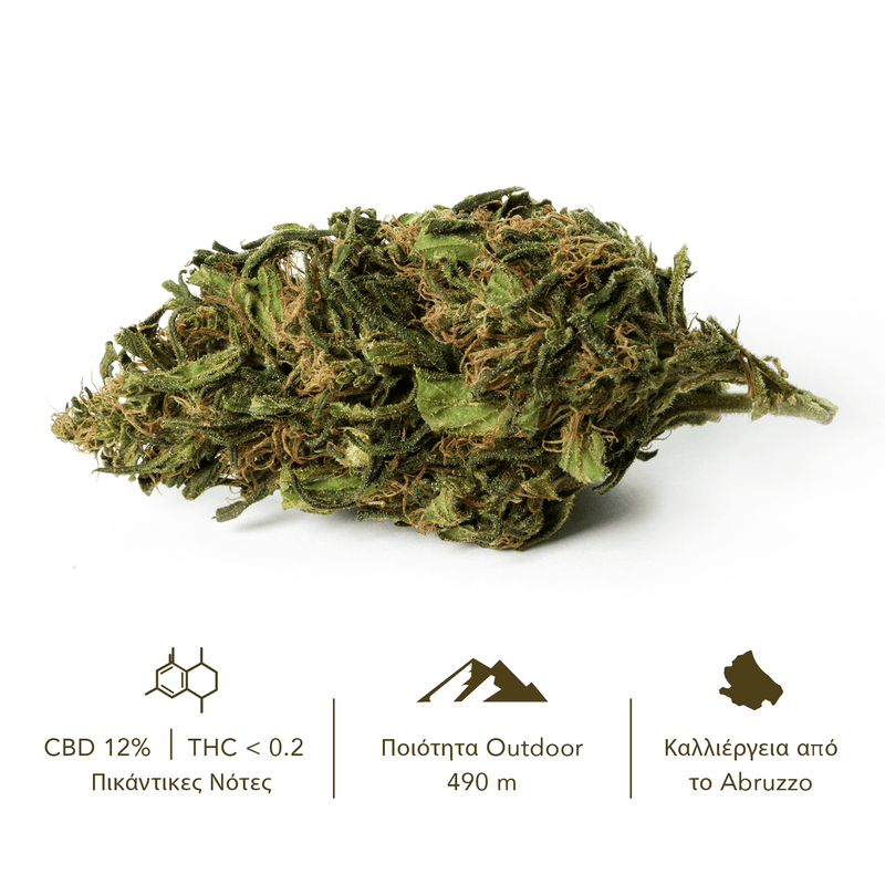 products/TERRE_di_CANNABIS_box_flower_RISERVA_GR1.png
