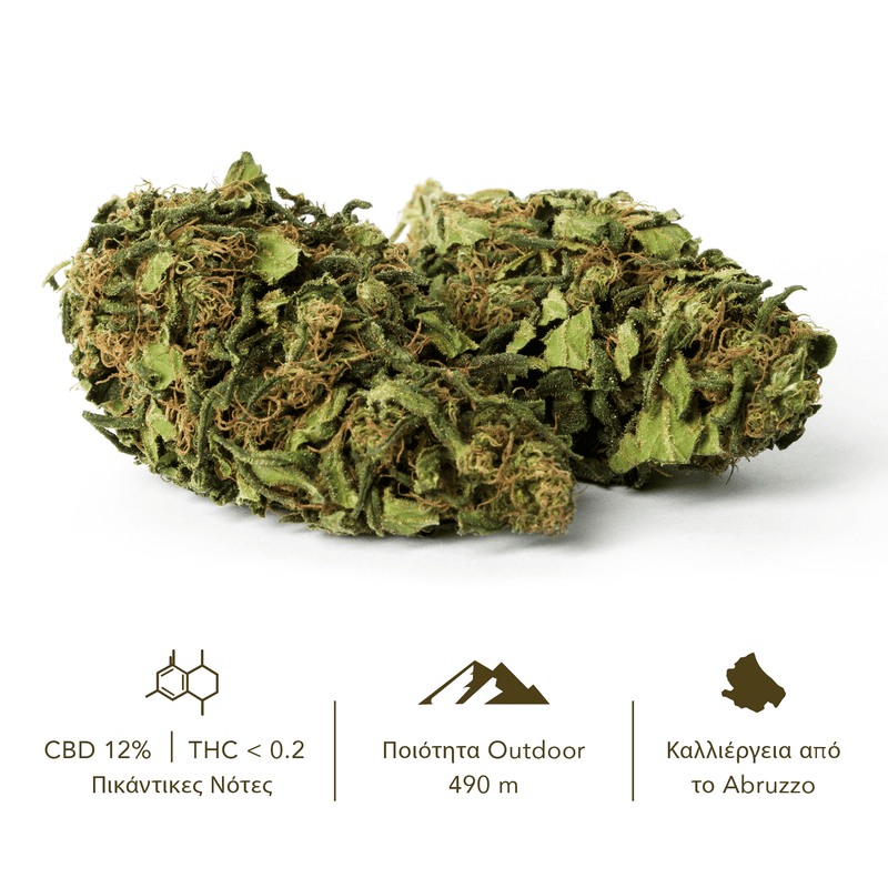 products/TERRE_di_CANNABIS_box_flower_RISERVA_GR2.png