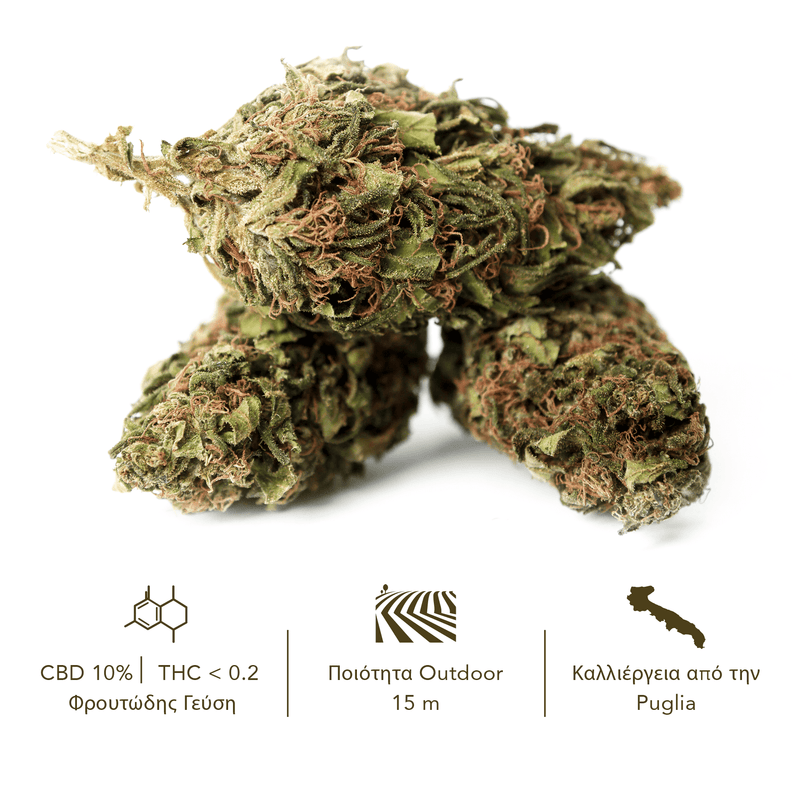 products/TERRE_di_CANNABIS_box_flower_RISERVA_GR3.png