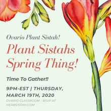 Load image into Gallery viewer, Plant Sistahs Spring Thing!