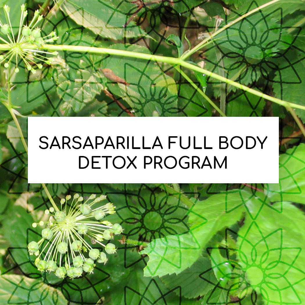 SARSAPARILLA FULL BODY DETOX PROGRAM