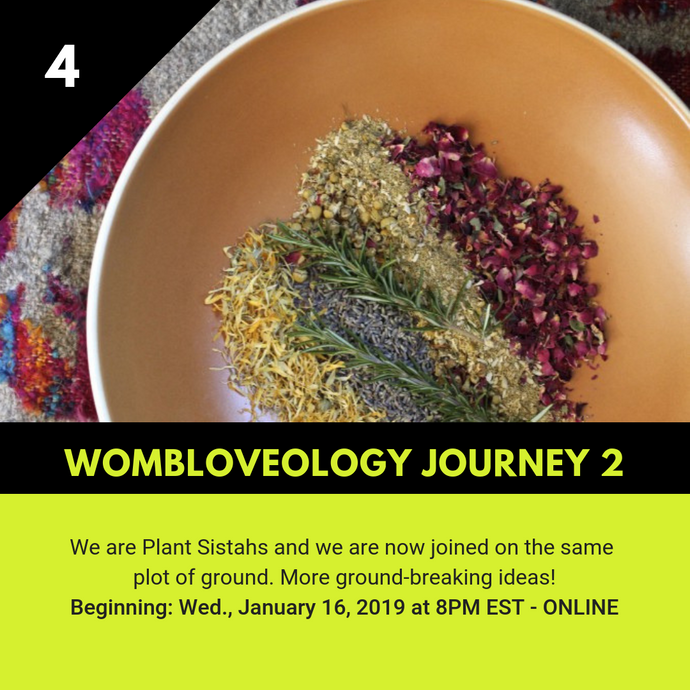4 - Wombloveology Journey 2