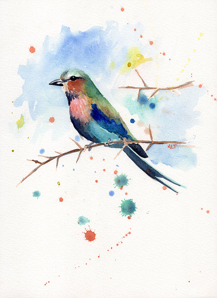Lilac-Breasted Roller -- Print