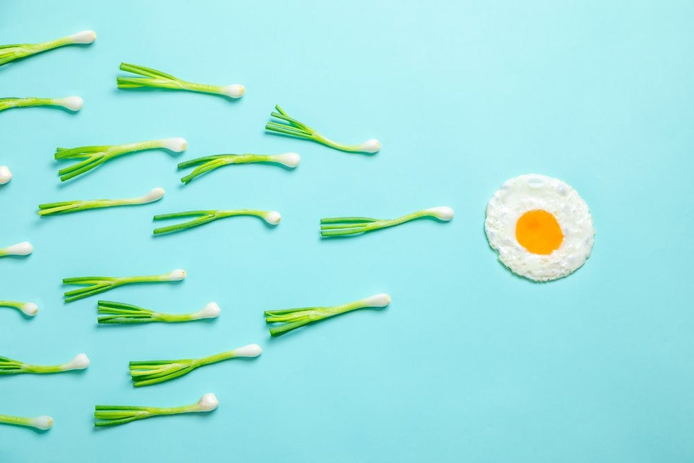 Diet Additions to Boost Fertility