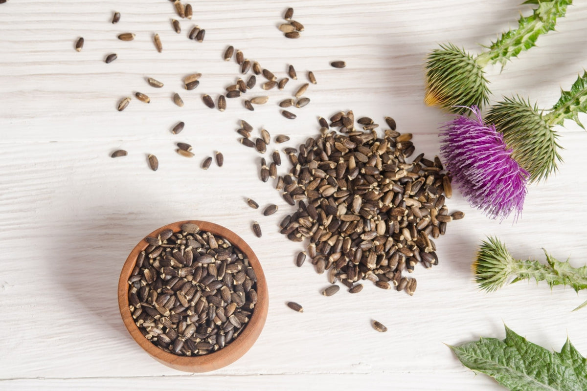 Milk Thistle and Breast Milk - What Nursing Moms Should Know