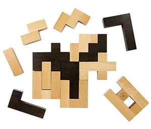 The Einstein Collection: Letter Block Puzzle