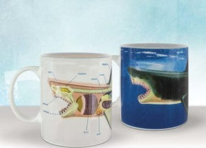 Shark Anatomy Heat Change Mug