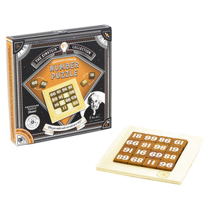 Einstein Collection Lock Puzzle