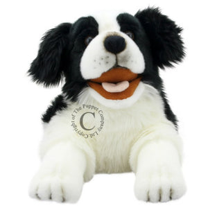 Border Collie Puppet - Playful Puppies